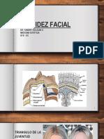 simposio estetica dr. holguin.pdf