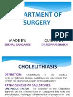 Cholelithiasis Sne