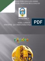 14. Lipidos - Copia
