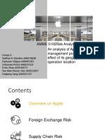 Apple Risk Analysis