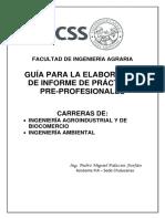 Guía Informe de Prácticas1