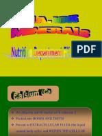 k10_Mineral Makro - FBS - 2008