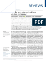 ! Cellular and epigenetic drivers of stem cell ageing 2018 review.pdf