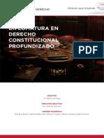programa-derecho-constitucional-profundizado-2019.pdf