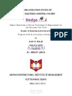 Report of Internship hedge .PDF