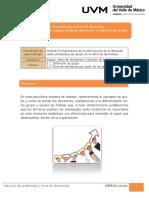 13_UVM_SOLUCION DE PROBLEMAS Y TOMA DE DECISIONES.pdf