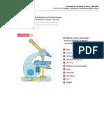 Atividade Histologia Microscopia e Tecidos