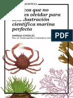 5 trucos que no puedes olvidar para una ilustración científica marina perfecta.pdf
