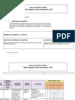Formato Guia Para Programa y Plan de Auditoria Jonathan r