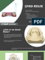 Quad Helix (Caso Clinico)