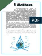 El Agua Como Producto