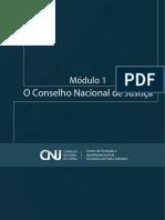 Modulo_1.1___CNJ.pdf