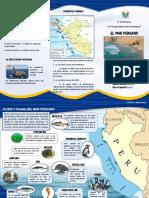 El Mar Peruano Triptico