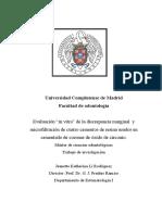 Proyecto_de_fin_de_máster.pdf