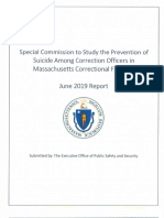 Special Commission Report