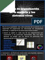 Niveles de Organización de La Materia y Los Sistemas Vivos