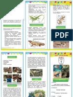 353404051 Triptico Los Reptile1