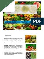 Microbiologia de alimentos