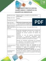 Protocolo Practica Virtual.docx