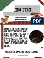 Reino fungi.pptx