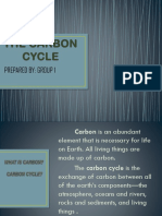 THE CARBON CYCLE.pptx