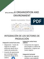GE - Organization and Environment