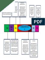 esquema derecho administrativo