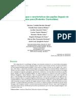 Morfologia da língua e características das papilas linguais