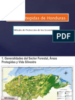 3. Areas Protegidas De  Honduras.pptx