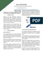 bluet_informe