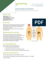 Unlocking the endocrine system