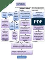 fisio anemia h.pptx