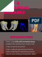 Pulp Diseases