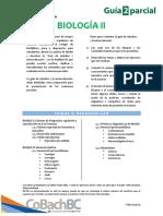 Guía de Estudio Segundo Parcial - Biología II Cobach BC