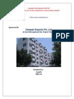 Summer Internship Report Anjali