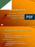 Neurodynamics Foster 08