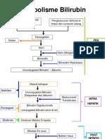 118876380-Metabolisme-Bilirubin.pdf