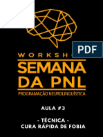 Workshop-Semana-da-PNL-aula-03.pdf