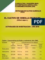 Presentacion Invest.cebolla2010