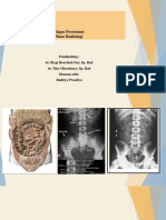 Ileus, Cholitis, Pneuoperitoneum, Dan Batu Nina