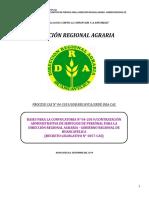 Bases Cas Nº 04-2019 Dra