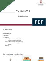 Capitulo VIII. Financiamiento