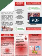 FOLLETO DE TUBERCULOSIS PARA EDITAR