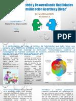 Evidencia 6 Informe Definiendo y Desarrollando Habilidades Para Una Comunicacion Asertiva y Eficaz