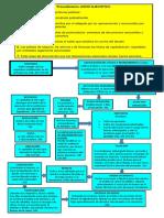 mapa conseptual ejecutivo via premiun.docx