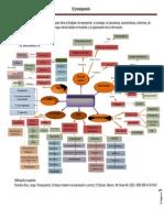169068498 Mapa Conceptual Del Presupuesto PDF Convertido