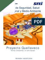 Manual HSE 2018.pdf
