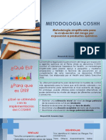 METODOLOGIA COSHH