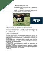 Taller Reconocer la importancia de los nutrientes en la alimentación bovina.docx