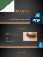 Parpados 3